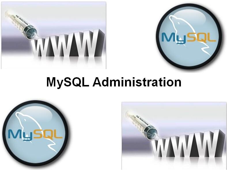 Cursus MySQL Administration