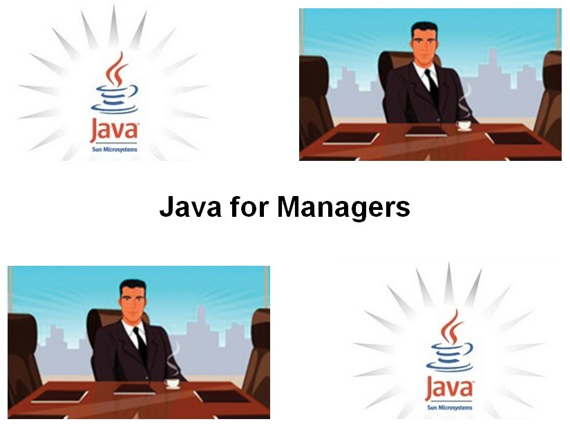 Cursus Java for Managers