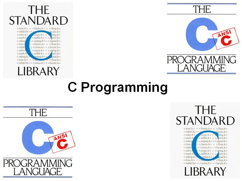 C programming coursework help