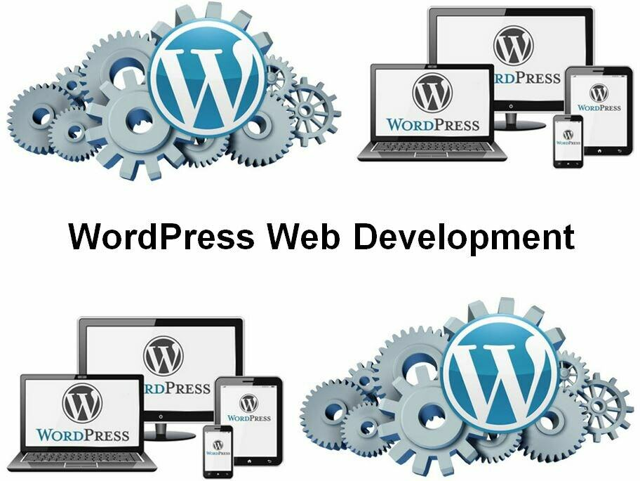Cursus WordPress Web Development