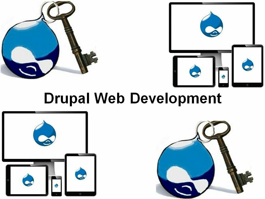 Cursus Drupal Web Development