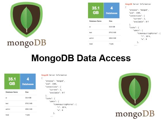 Course-MongoDB-Data-Access