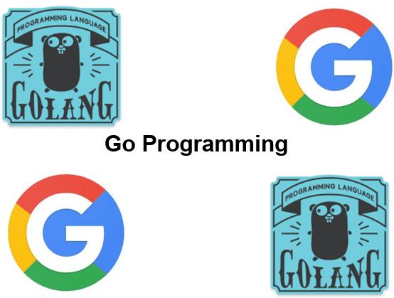 Cursus Go Programmeren